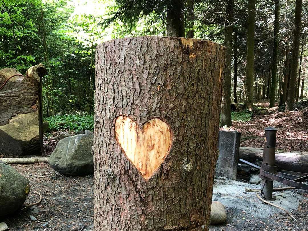 KITA Stärnschnuppe Waldgruppe: Baumherz