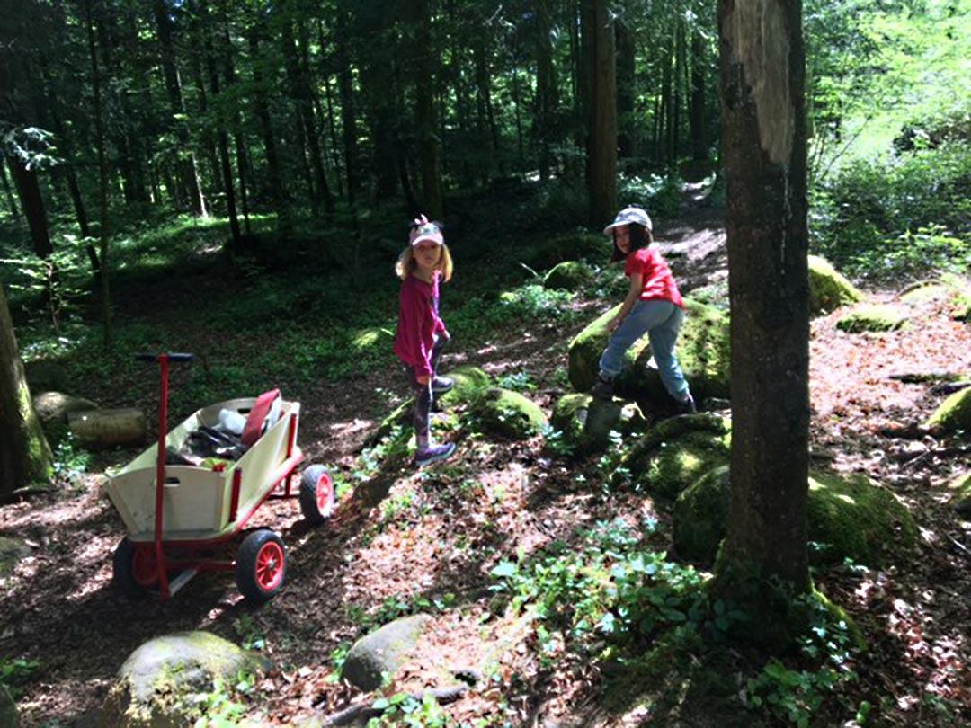 KITA Stärnschnuppe Waldgruppe: Waldwagen