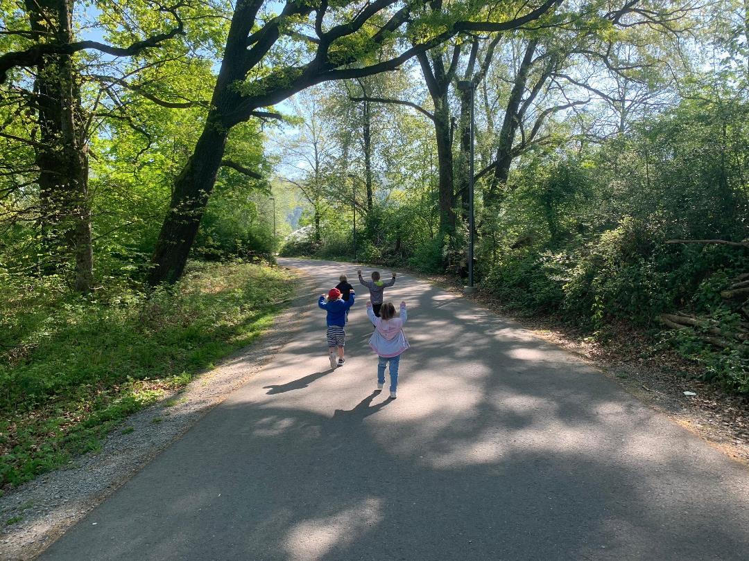 KITA Stärnschnuppe täglich Draussen: im Allmendwald