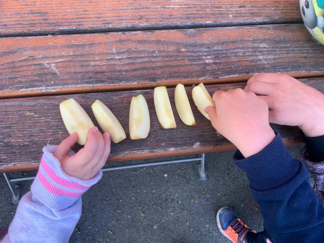 KITA Stärnschnuppe täglich Draussen: Apfelschnitze essen