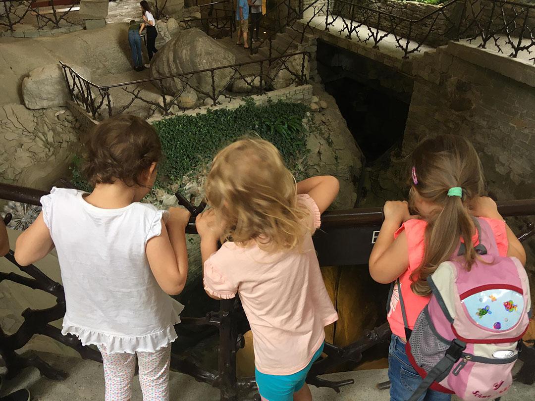 KITA Stärnschnuppe Ferienbetreuung Sommer: Ausflug zum Gletschergarten und Lidospielplatz