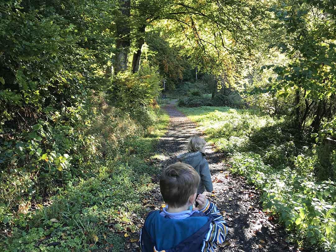 KITA Stärnschnuppe Ferienbetreuung Herbst: ein Tag im Wald